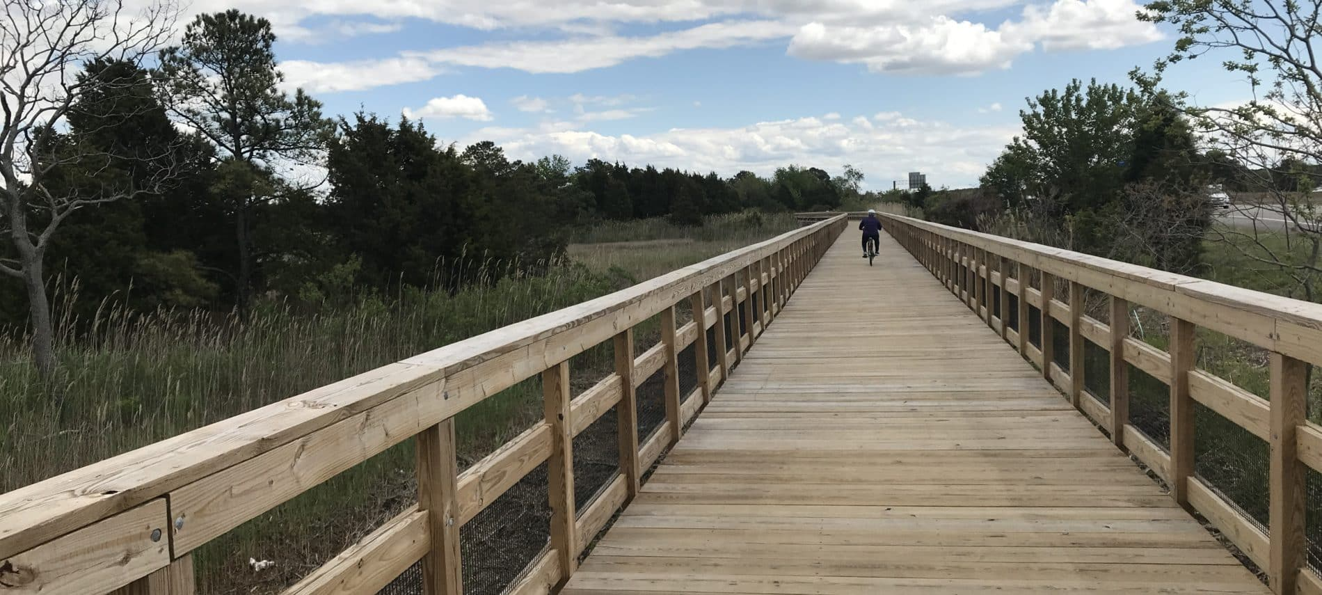 boardwalk over marsh